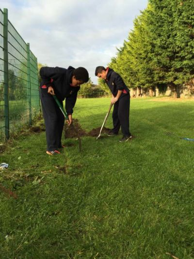 Science Department and TY students start preparing the school biodiversity garden