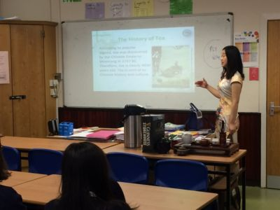 Chinese Language and Culture classes for TY students