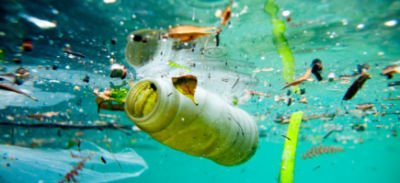 Green Schools aiming for fourth Green Flag for Marine Litter