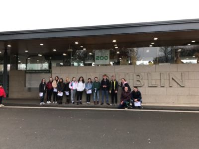 5th Year Biology students carry out an Ecological study at Dublin Zoo