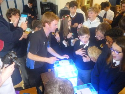 Green Schools Action Day: Save our Seahorses